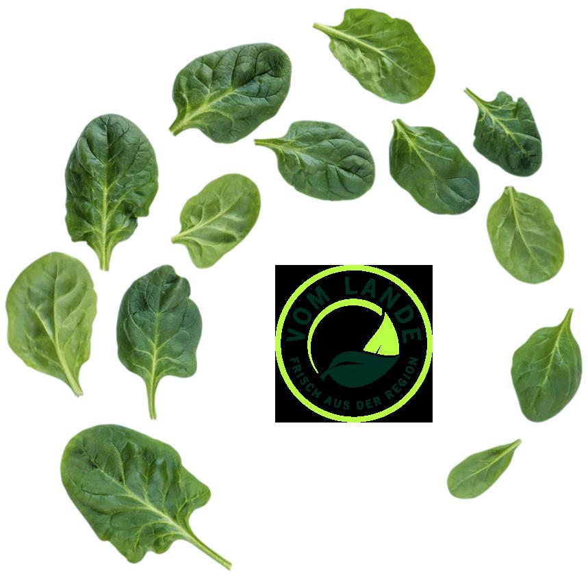Fresh + Friends - Vom Lande - Logo - Spinat Wirbel