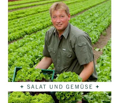 Fresh + Friends - Anbau - Salat und Gemüse